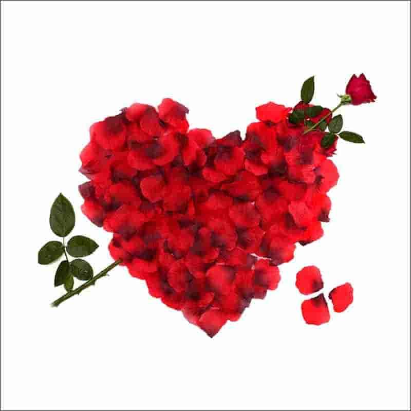 petalos rojos para bodas