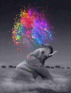 pintura por numeros de animales
