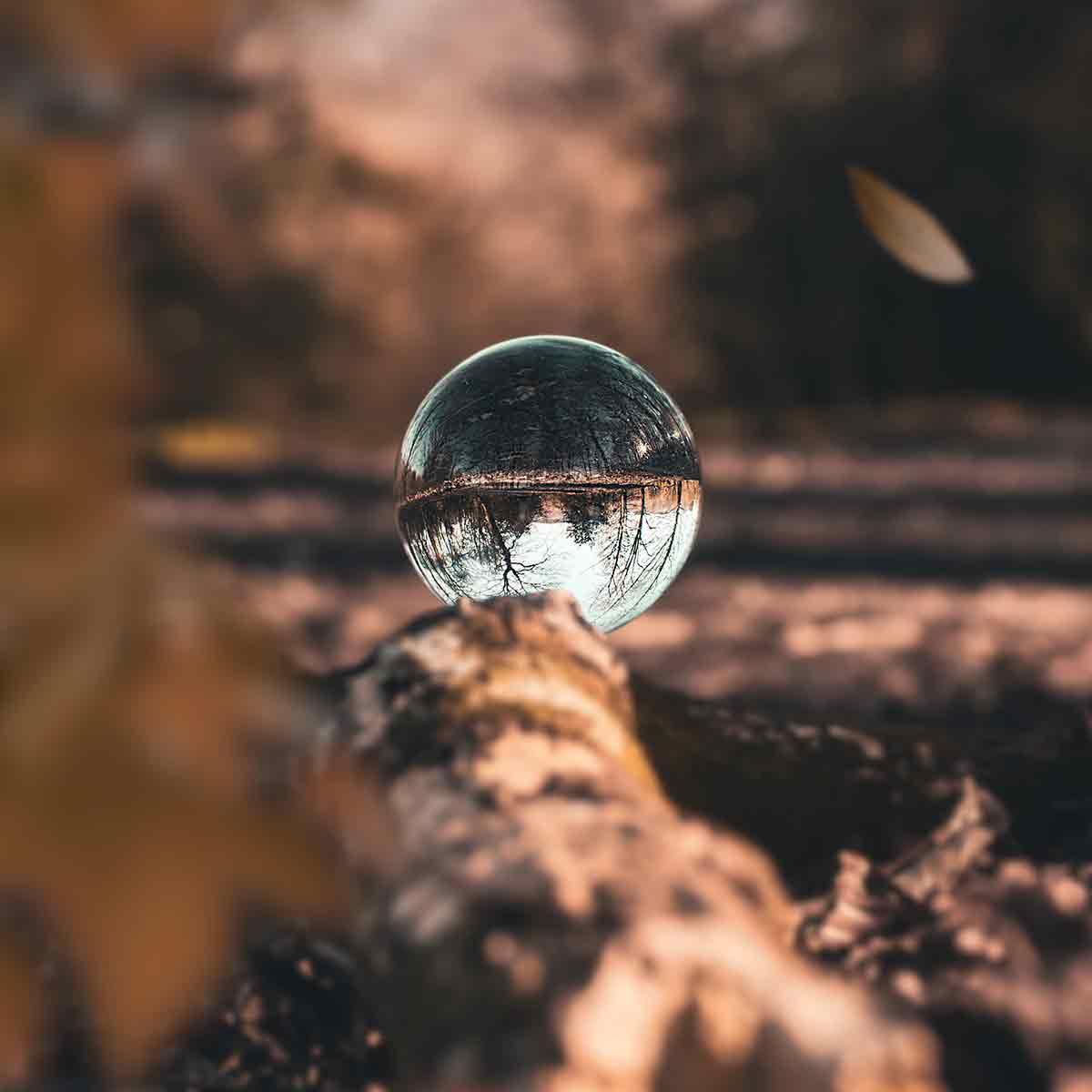 fotos creativas de otoño