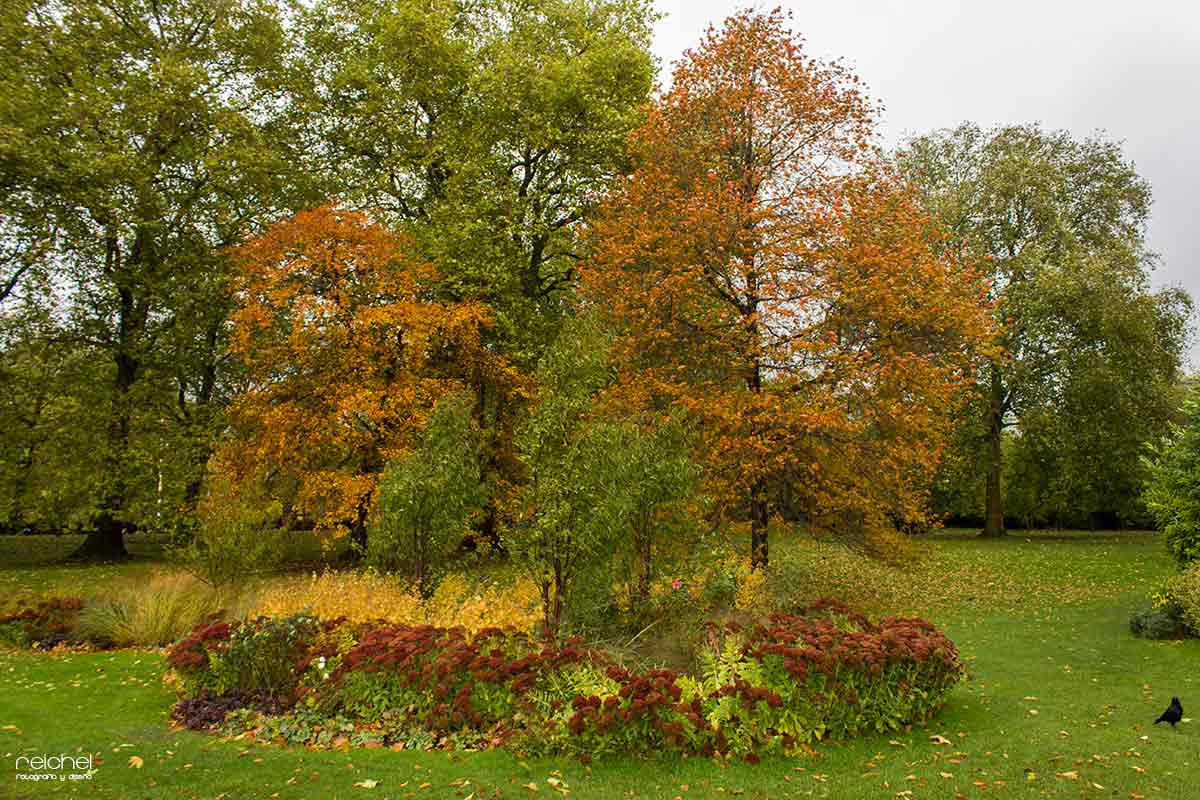 parques de londres en otoño