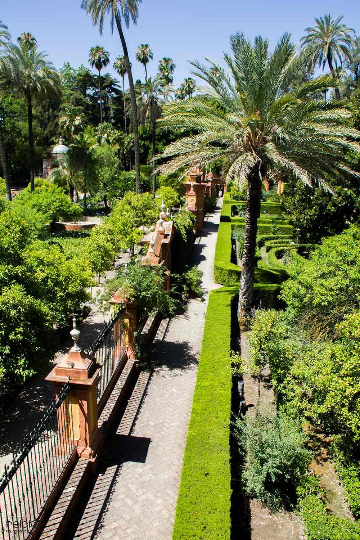 jardines del real alcalzar de sevilla