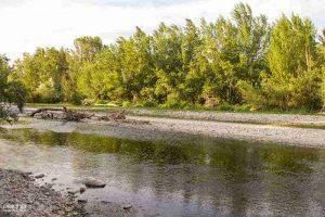 desembocadura del rio gallego